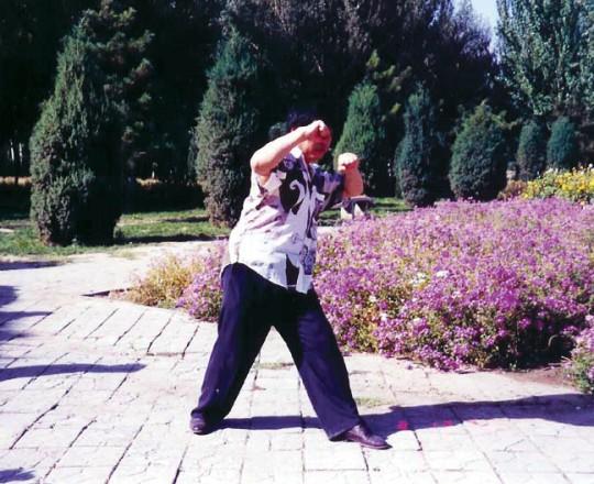 Dong Zhen, uno dei migliori allievi del Maestro Yang Lin Sheng, molto forte nello Xing Yi Quan e nell'Yi Quan