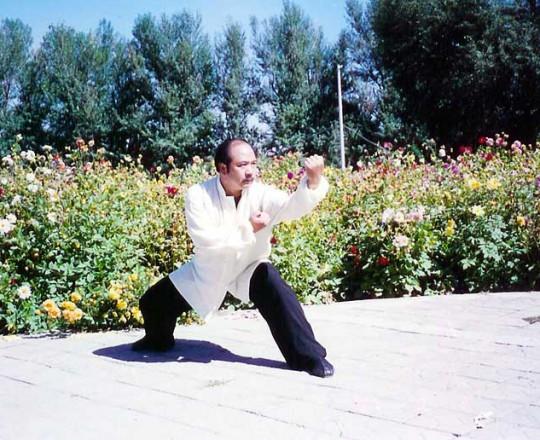 Lu Jian Jun, studente del Maestro Yang Lin Sheng, famoso Maestro del bastone stile interno e ricercatore del Taosimo