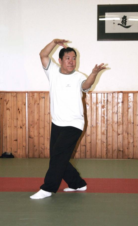 Shi Zi Zhang Kou - Il leone apre la bocca