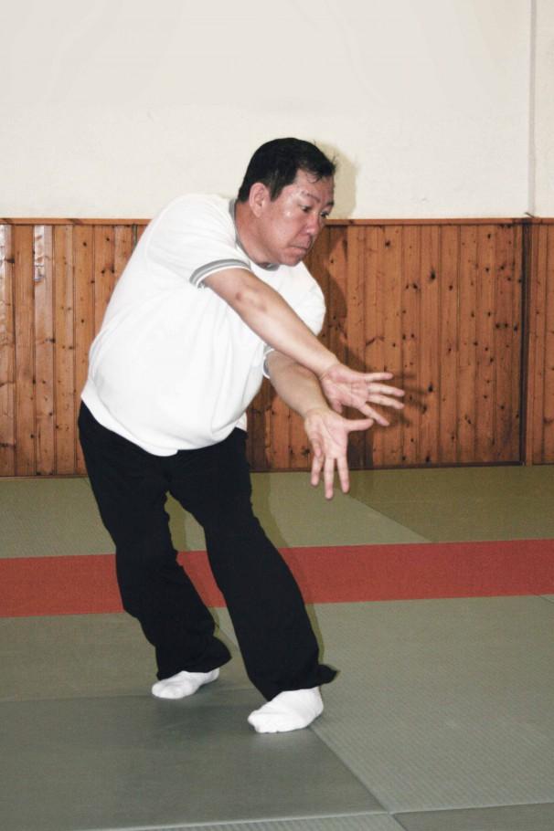 Fan Shen Zhang - Quinto palmo antico, palmo avvolgente