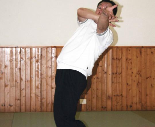 Maestro Yang Lin Sheng - Ba Gua Zhang - Lao ba zhang - Fanshen zhang, quinto palmo antico - palmo avvolgente