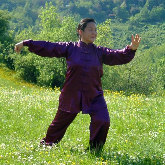 La Maestra Liu Chun Yan pratica la forma 13 del Taiji Quan Yang