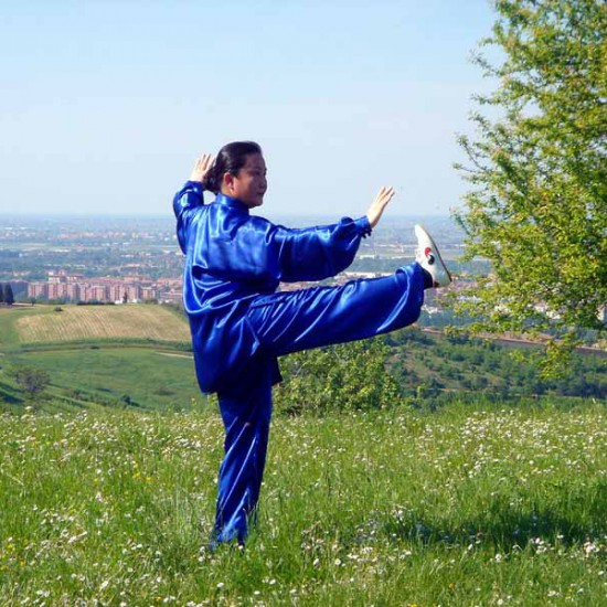 La Maestra Liu Chun Yan pratica la forma 24 del Taiji Quan Yang