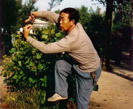 Il Maestro Meng Man Cang, famoso Maestro del Taiji Quan, Kung Fu fratello del Maestro Yang Lin Sheng