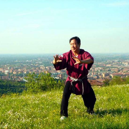 Il Maestro Yang Lin Sheng pratica Fu An Shi Li