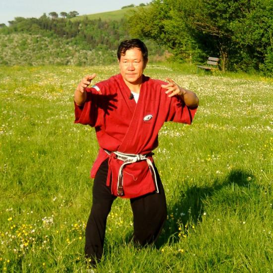 Il Maestro Yang Lin Sheng pratica Yi Quan