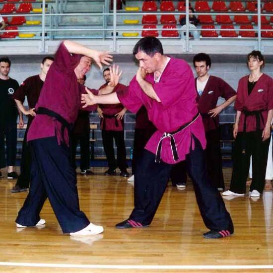 Il Maestro Yang Lin Sheng spiega il Ta Zhang, tecnica di palmo del Ba Gua Zhang