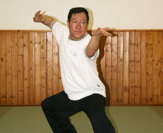 Maestro Yang Lin Sheng - Taiji Quan Chen - Jin gang dao dui, pestare nel mortaio