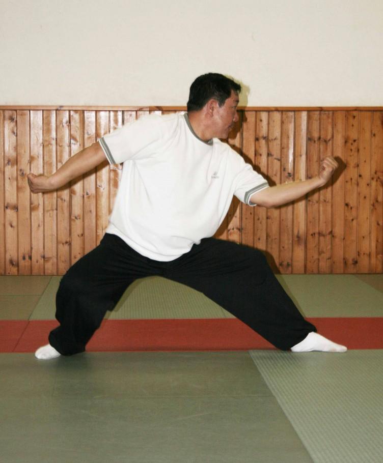 Shang bu qi xing, avanzare nella posizione delle sette stelle