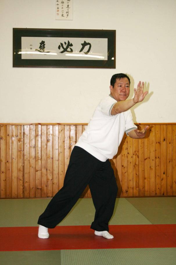 Xie xing ao bu, spazzolare il ginocchio in posizione inversa