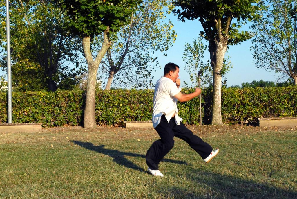 Yang Lin Sheng - Xing Yi Quan - 5 elementi - Pao chuan (fuoco)
