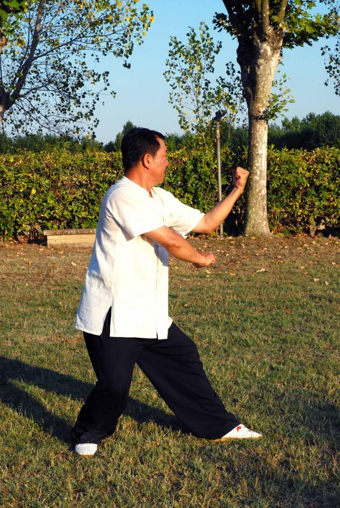 Yang Lin Sheng - Xing Yi Quan - 5 elementi - Zuan Quan (acqua), guardia sinistra