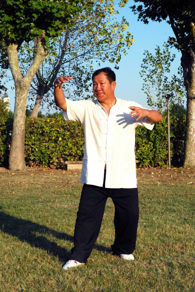 Maestro Yang Lin Sheng - Yi Quan - Mao dun zhuang, guardia destra