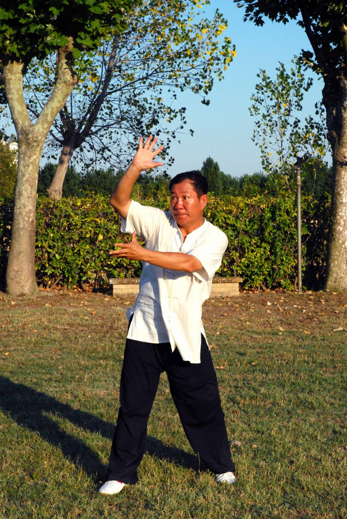 Maestro Yang Lin Sheng - Yi Quan - Pi fa shi li