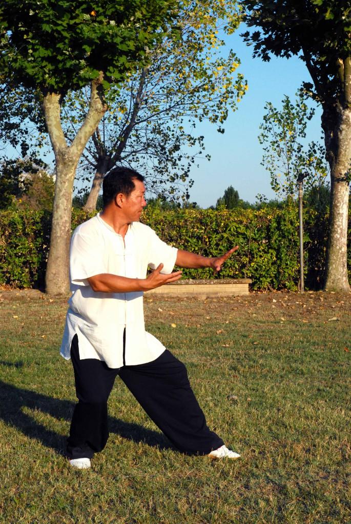 Maestro Yang Lin Sheng - Yi Quan - Pian gua shi li, guardia sinistra