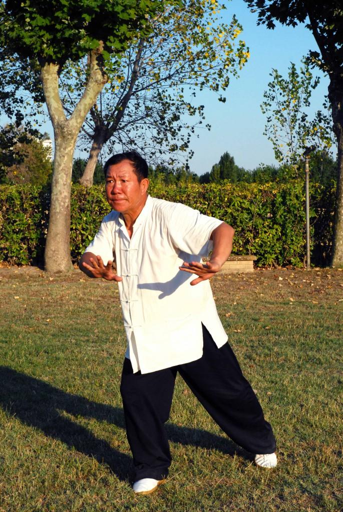 Maestro Yang Lin Sheng - Yi Quan - Shen gui chu shui
