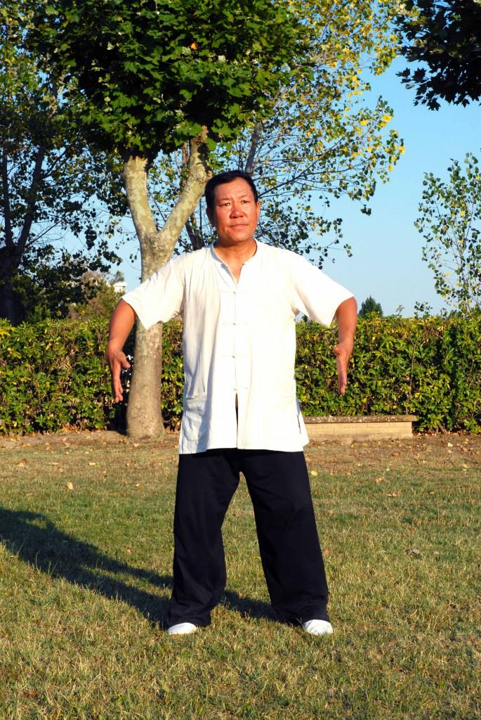 Maestro Yang Lin Sheng - Yi Quan - Ti bao zhuang