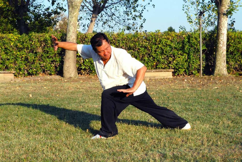 Xiang long zhuang, guardia sinistra