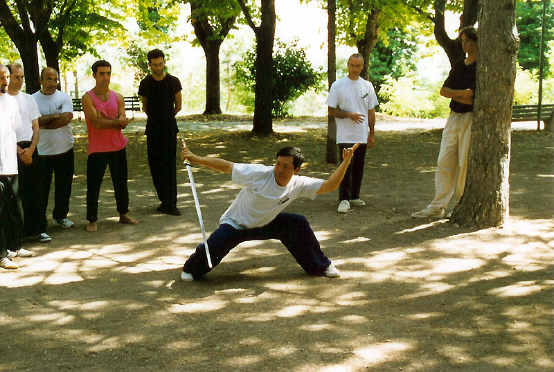 Il Maestro Yang Lin Sheng esegue la forma di spada Tan Lang