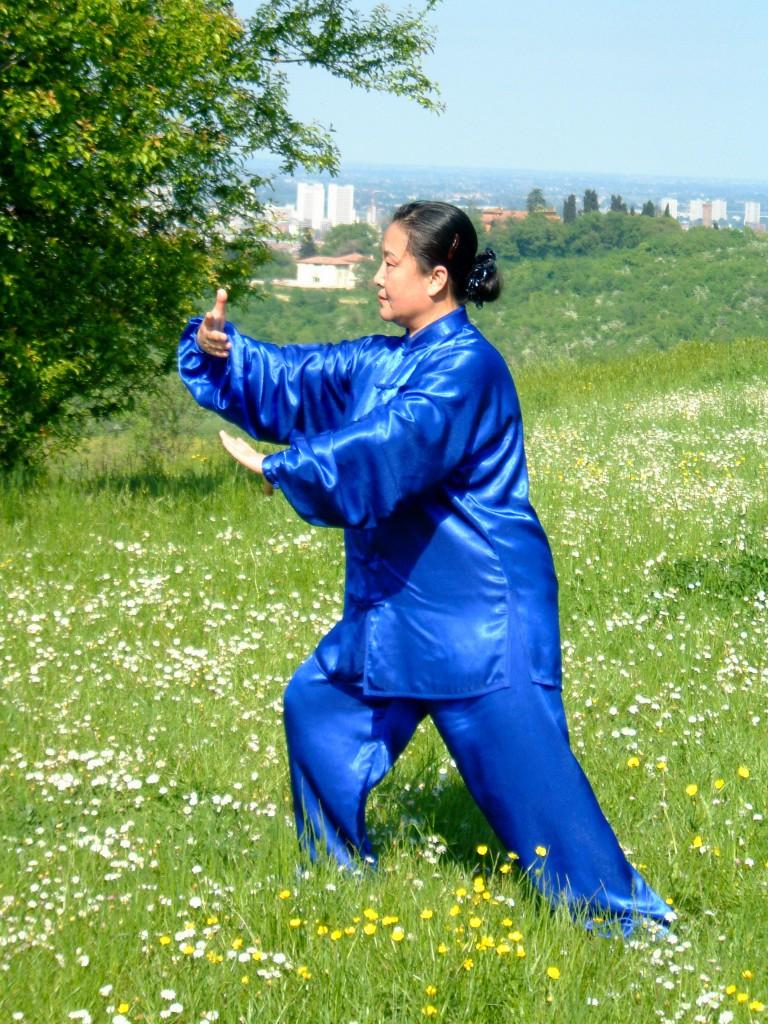 La Maesta Liu Chun Yan pratica la forma 13 del Taiji Quan Yang
