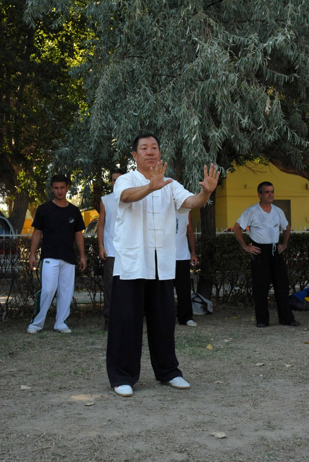 Forma13, movimento 1 - Qi Shi (apertura)