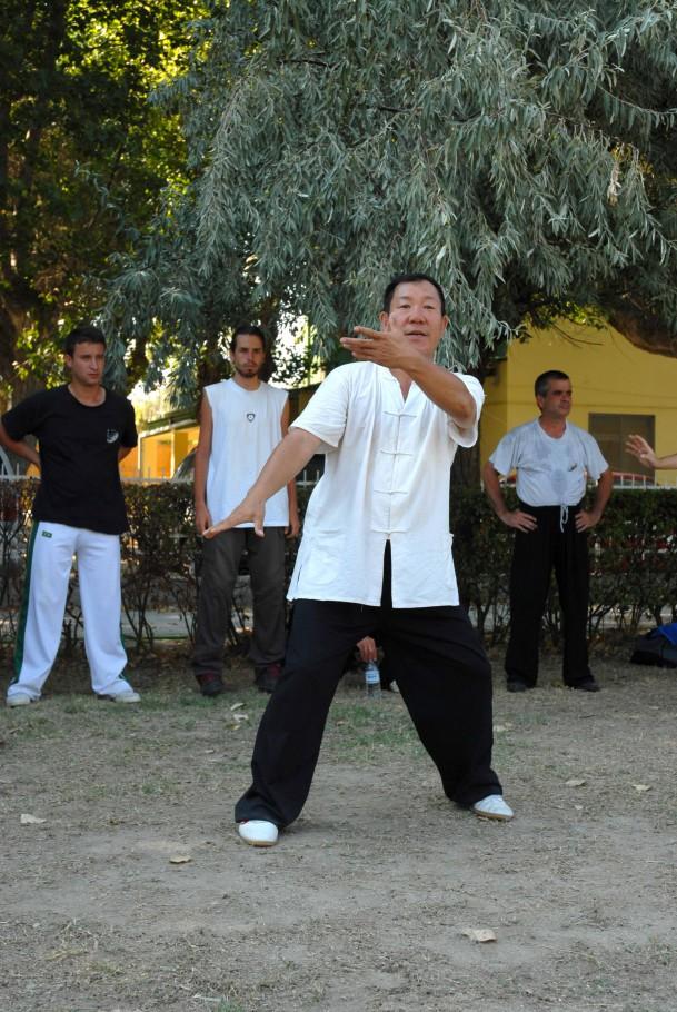 Forma13, movimento 2 - Yun Shou (mani tra le nuvole)