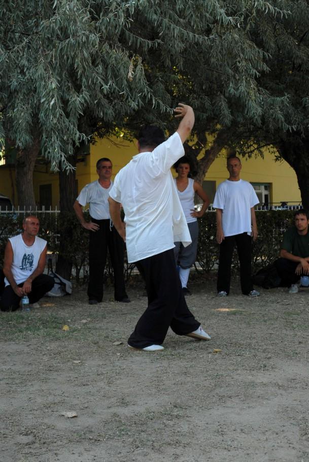 Forma13, movimento 5 - Bai He Liang Chi (la gru bianca apre le ali)