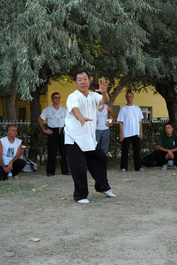 Forma13, movimento 6 - Zuo Lou Xi Ao Bu (spazzolare il ginocchio a sinistra)