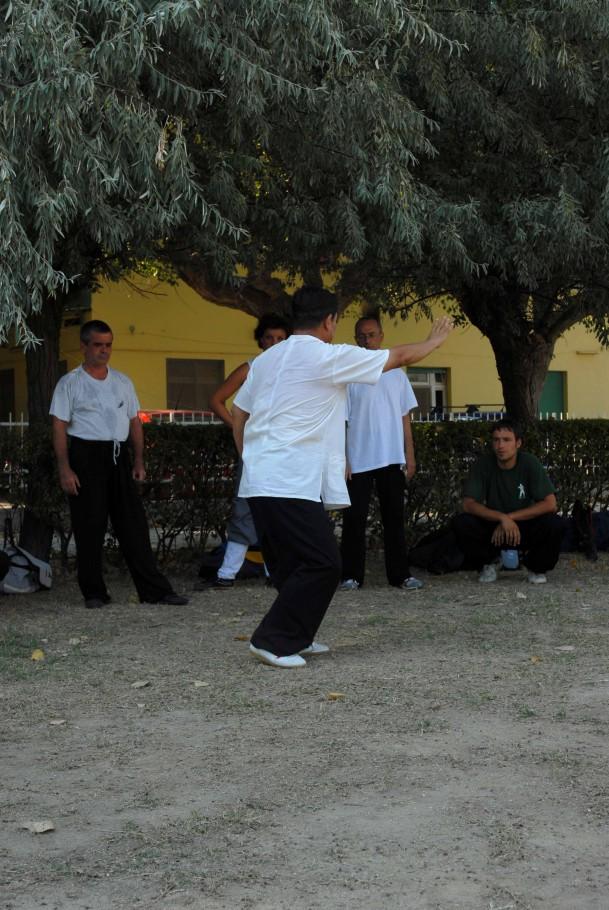 Forma13, movimento 7 - Shou Hui Pi Ba (suonare il liuto)