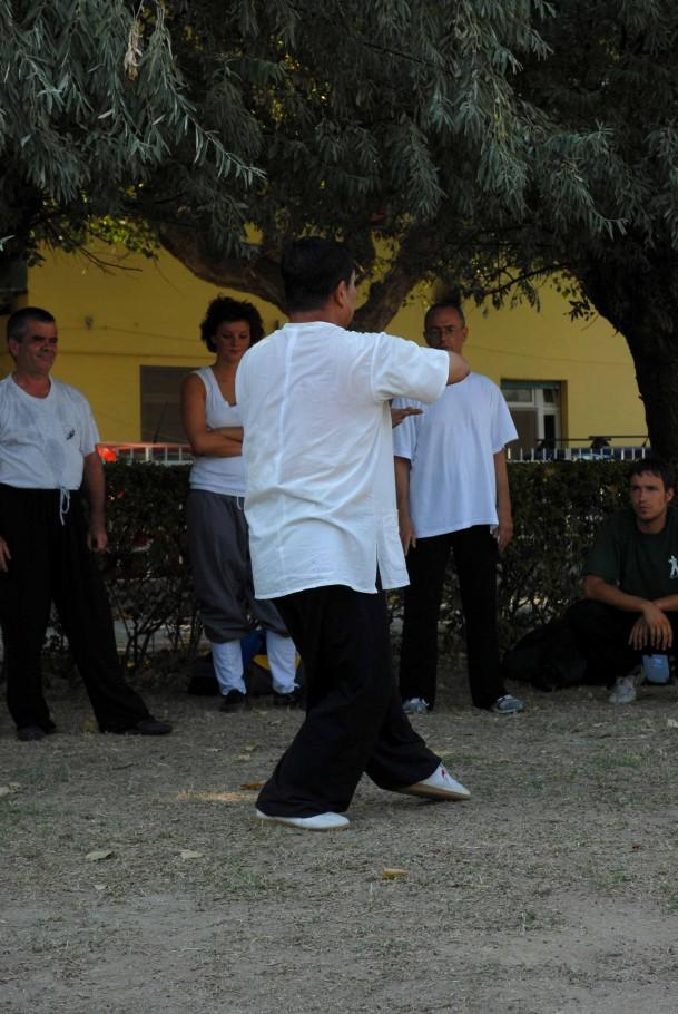 Forma13, movimento 8 - Gao Tan Ma Chuan Zhang (accarezzare la criniera del cavallo)