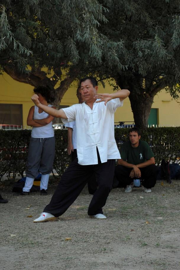 Forma13, movimento 9 - Zhuan Shen Pie Shen Chui (colpire con il pugno girando il corpo)