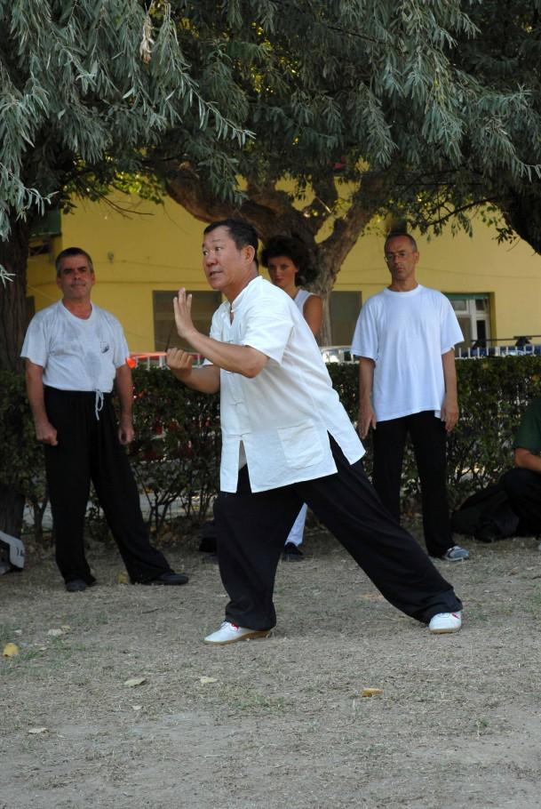 Forma13, movimento 10 - Jin Bu Ban Lan Chui (parare e colpire con il pugno)