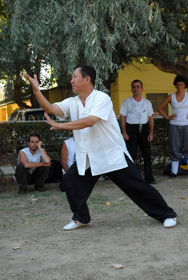 Forma13, movimento 11 - Shang Bu Lan Que Wei (afferrare la coda del passero)