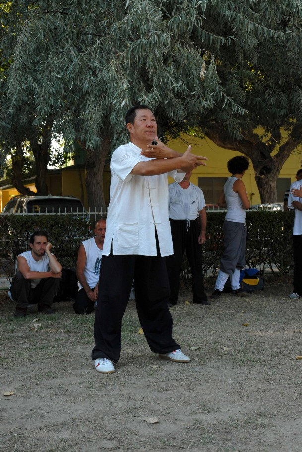 Forma13, movimento 12 - Shi Zi Shou (afferrare la coda del passero)