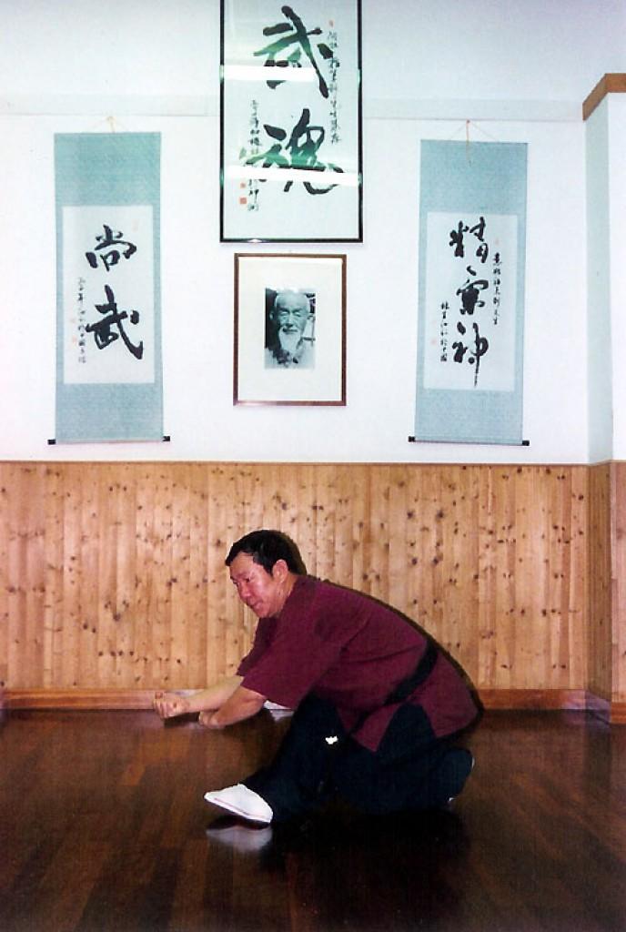 Xing Yi Quan - 12 Animali, Yao Xing, Falco