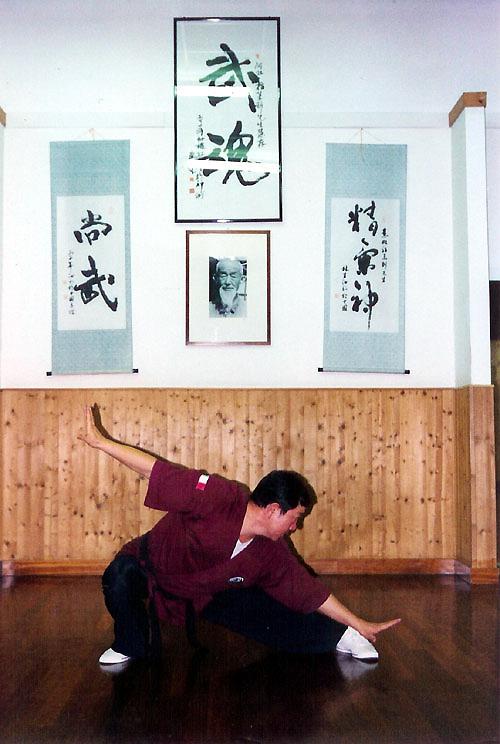 Xing Yi Quan - 12 Animali, Yan Xing, Rondine
